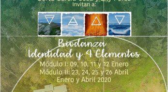 Formación Extensión Biodanza Identidad y 4 Elementos. Enero y Abril 2020